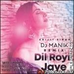 Dil Royi Jaye Remix - Dj Manik 128kbps-ApuWap.Net.mp3